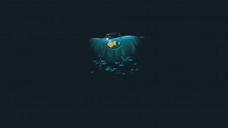 سمك زينة جذاب (1)