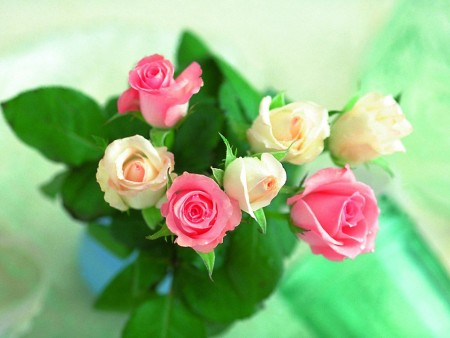 صور باقات ورد جميل (2)