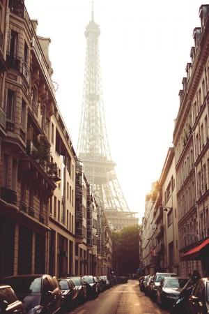 صور برج أيفل (4)