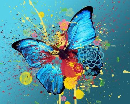 صور فراشات ملونة (1)