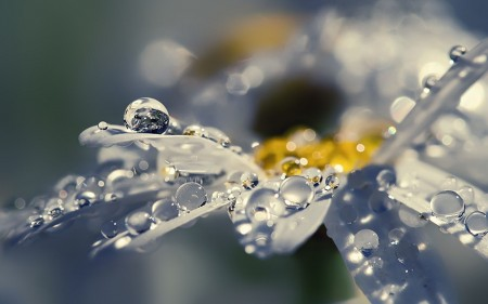 قطرات مطر (5)