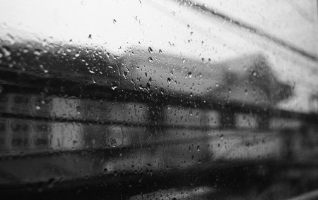 مطر الشتاء بالصور (1)