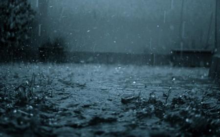 مطر الشتاء بالصور (2)