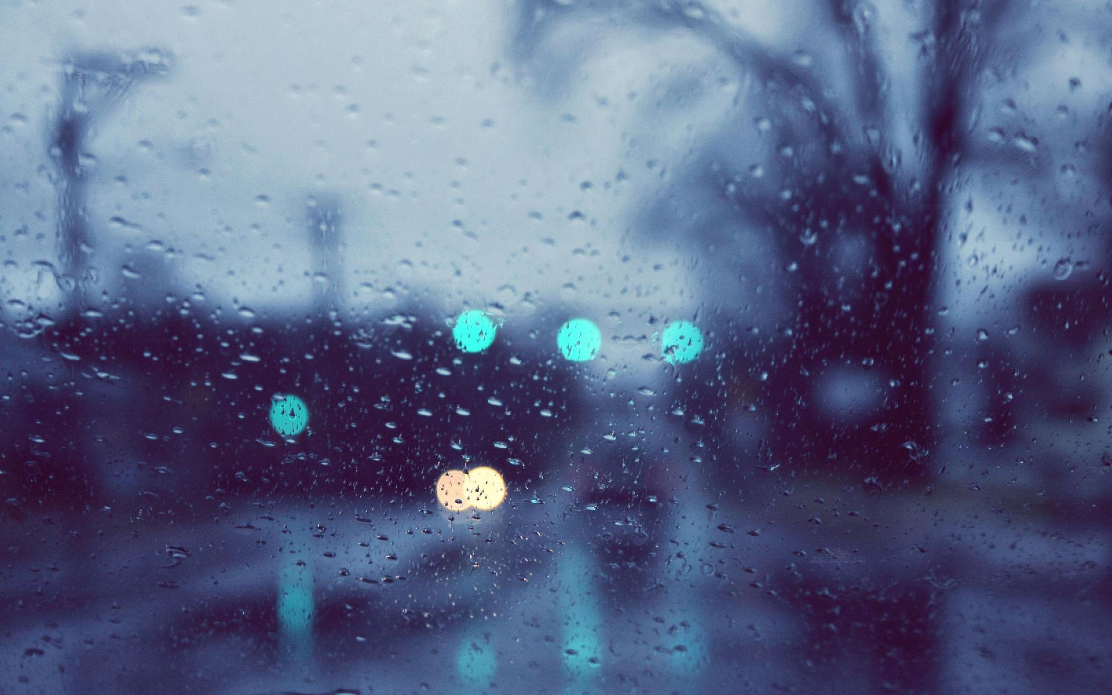 مطر الشتاء بالصور (3)