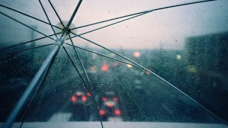 مطر جميل (1)