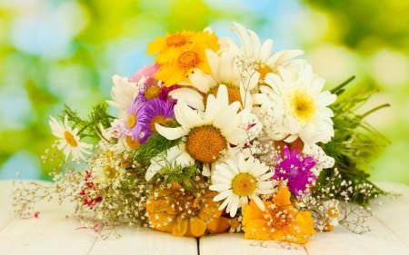 احلي صور زهور (1)