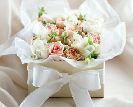 زهور الربيع (3)