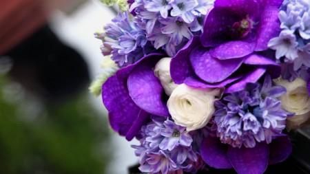 صور زهور وورود (1)