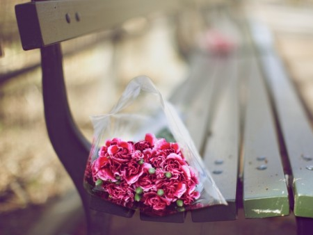 صور زهور وورود (2)