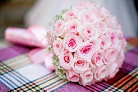 صور زهور وورود (3)