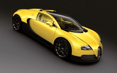 عربيات سباق صفراء (1)