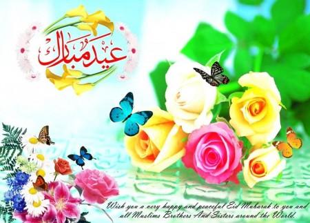 عيد الاضحي2015 (4)