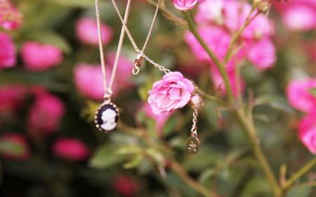 مجوهرات بالصور (3)