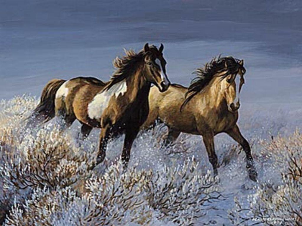 خيول (6)