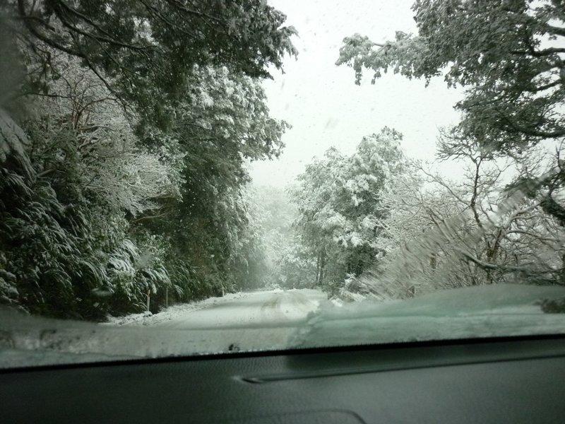 احلي صور عن البرد (3)