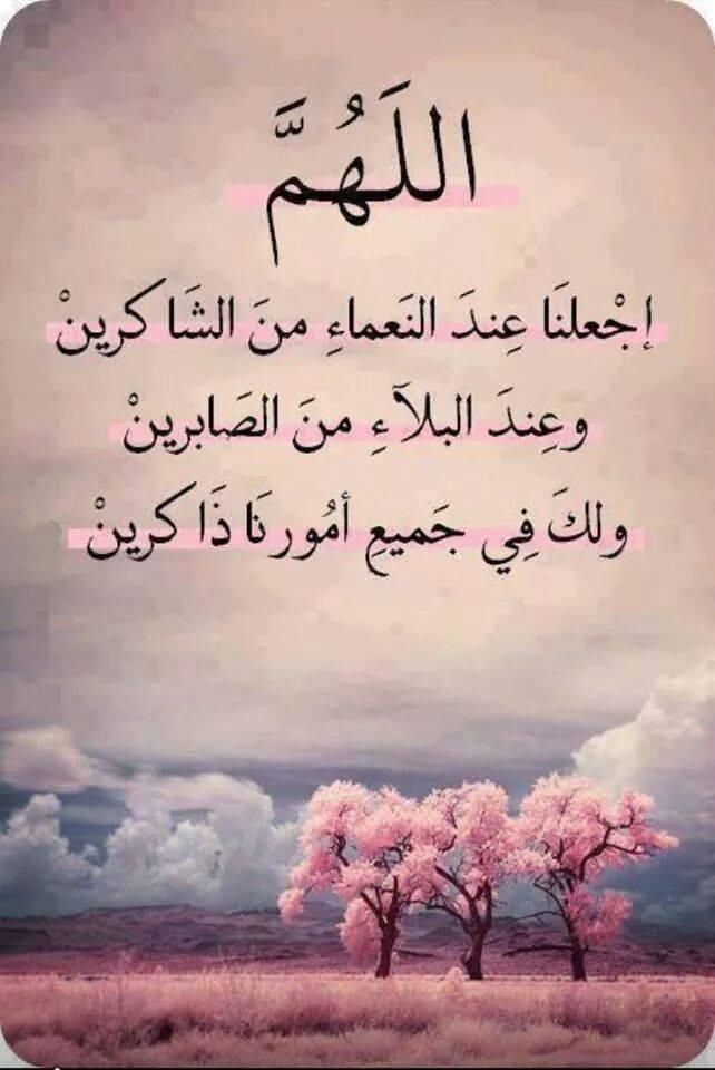 الصور الاسلامية  (4)