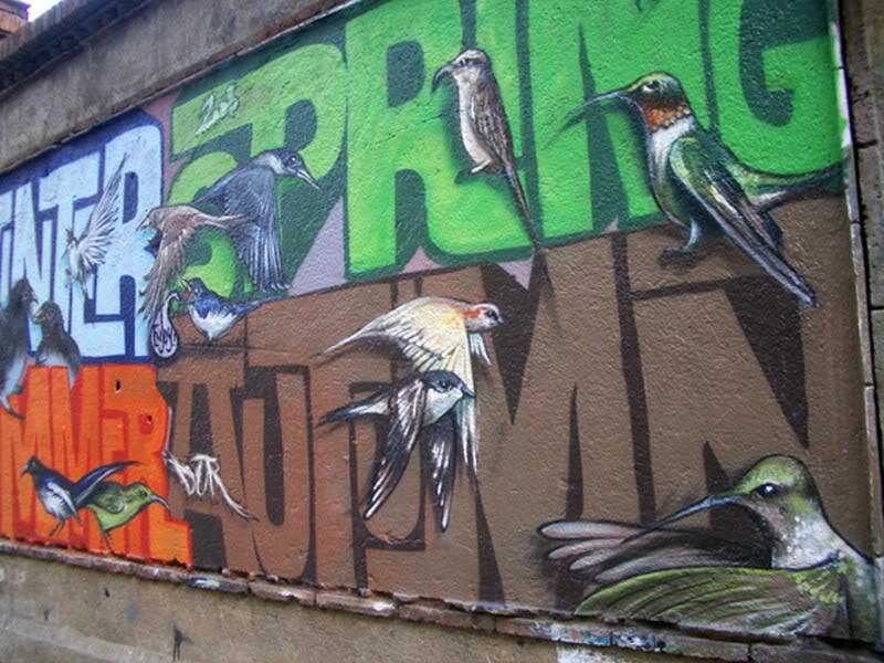 رسم على الجدران  (4)