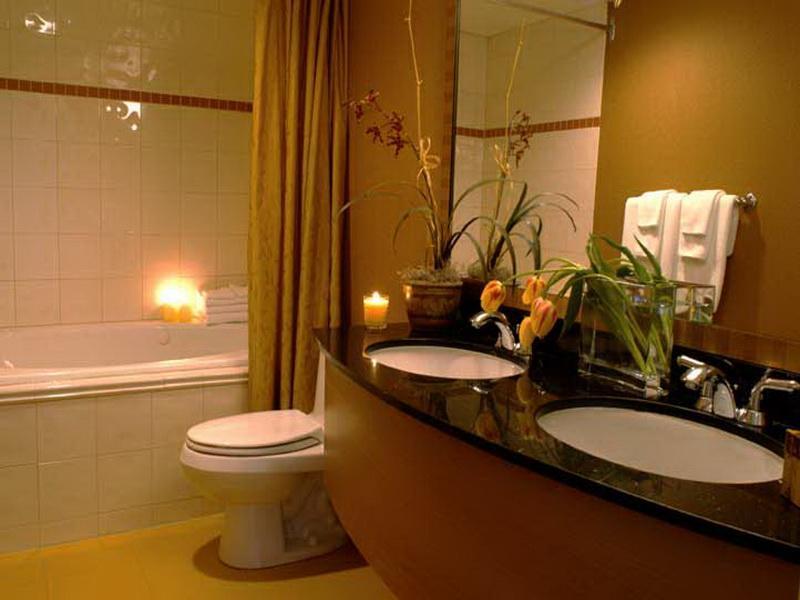 ستائر حمامات بسيطة  (3)