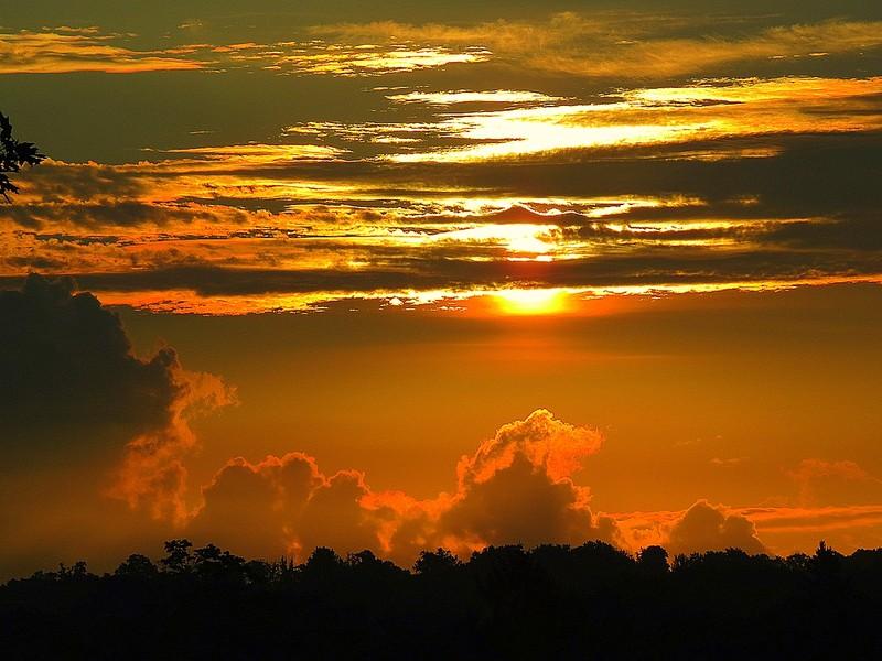 شروق الشمس اليوم  (4)