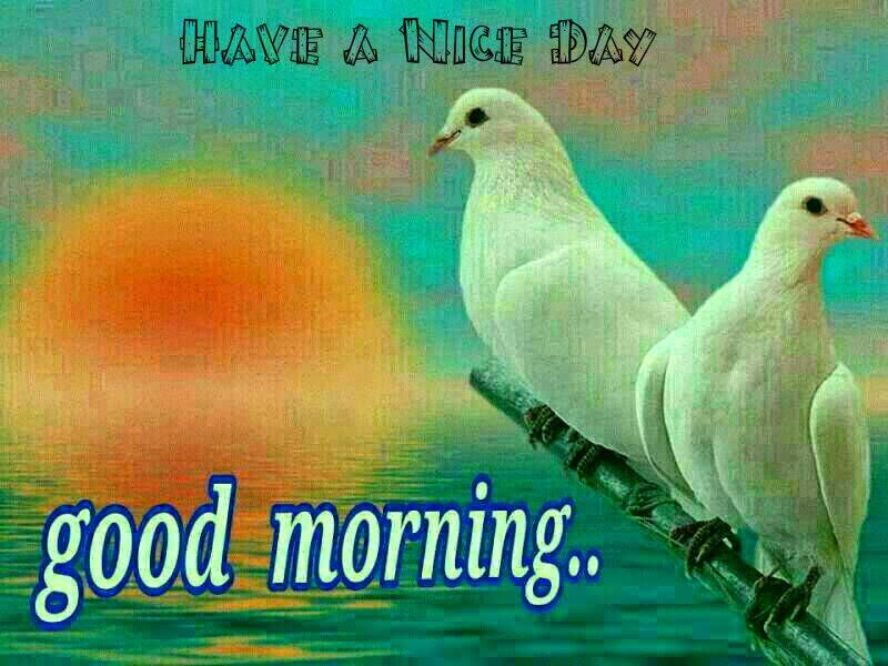 صباح خير