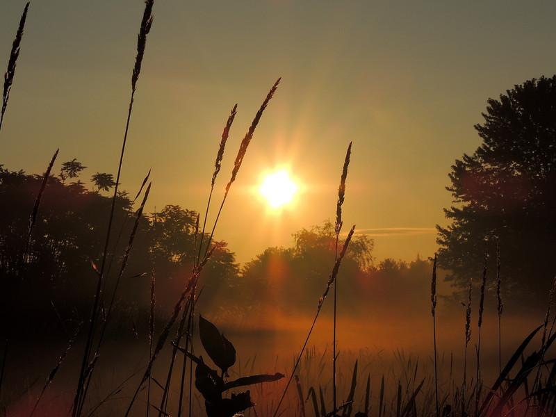 صورة شروق الشمس  (2)
