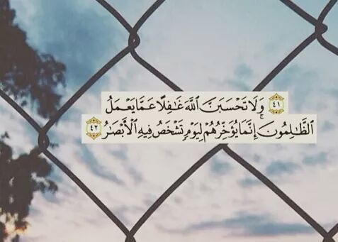 صور اسلامية جديدة (3)