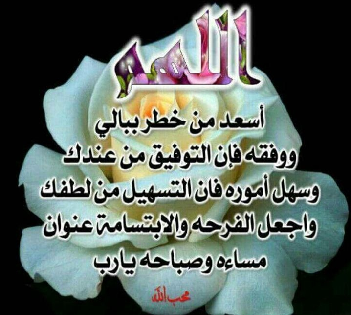 صور-اسلامية (2)