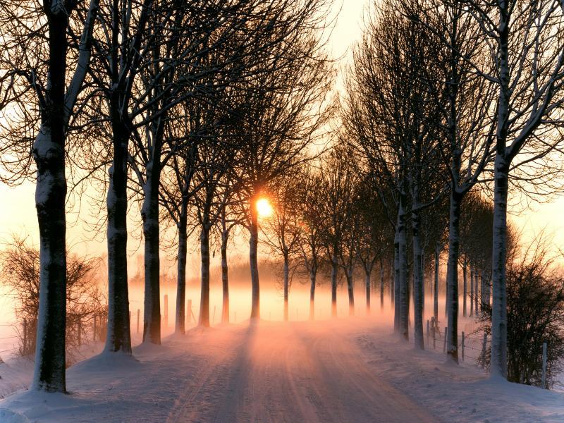 صور الشتاء (2)