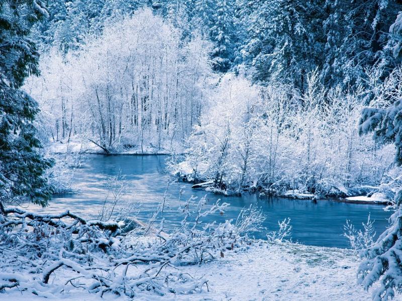 صور الشتاء  (3)