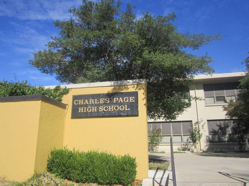 صور المدرسة (3)