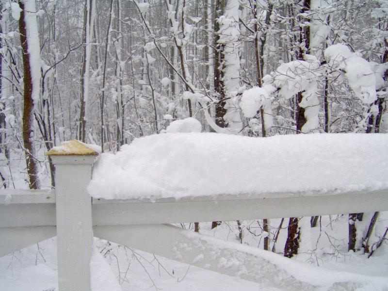 فصل الشتاء 2