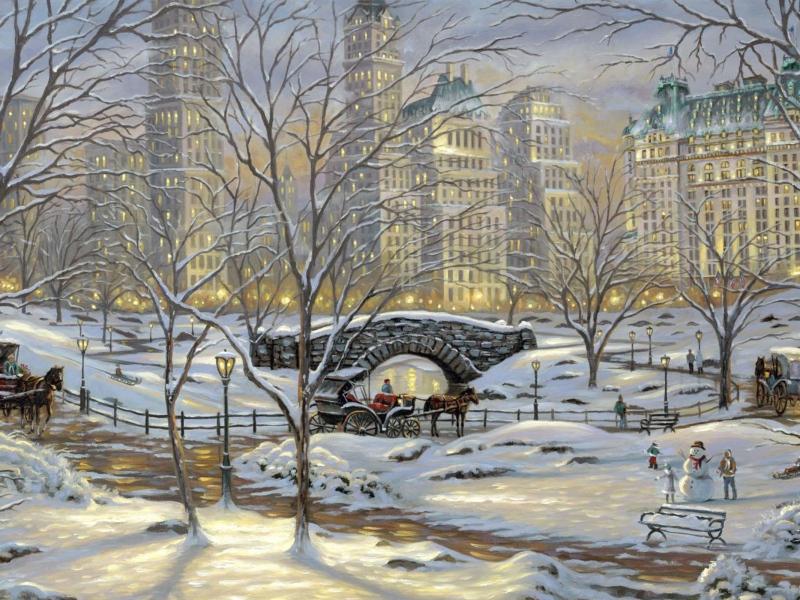 صور في الشتاء (1)