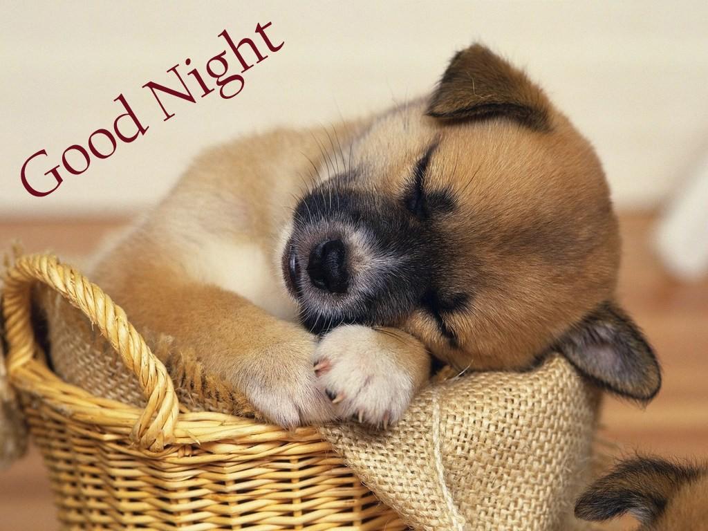 good night facebook photos (2)