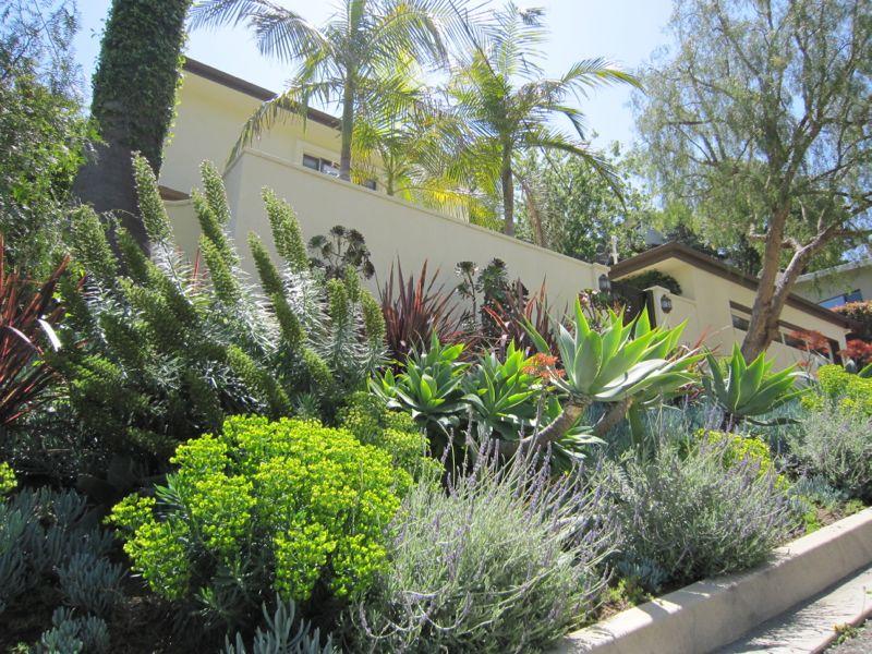 اجمل حدائق منزلية (4)