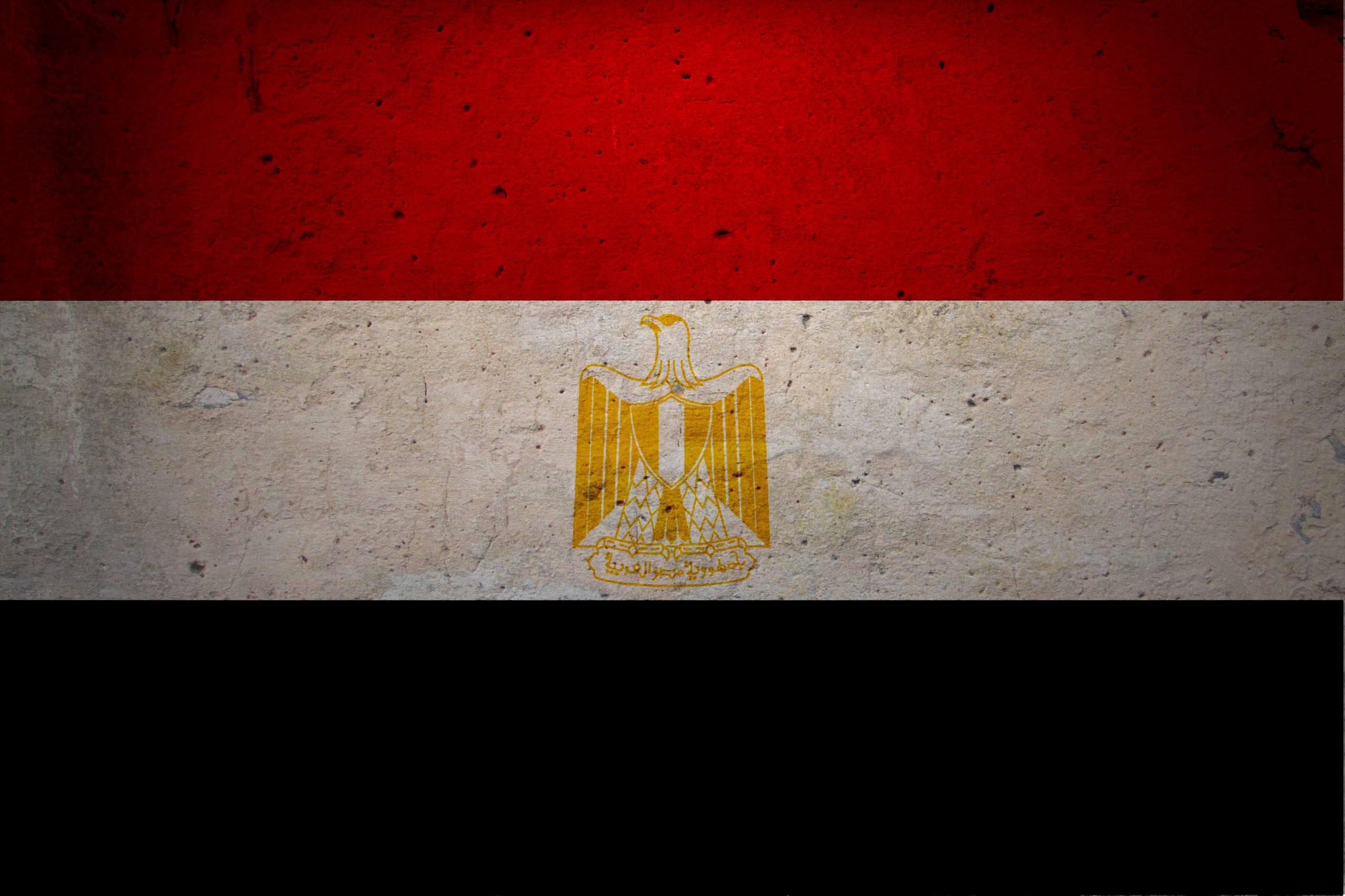 العلم المصري بالصور (1)