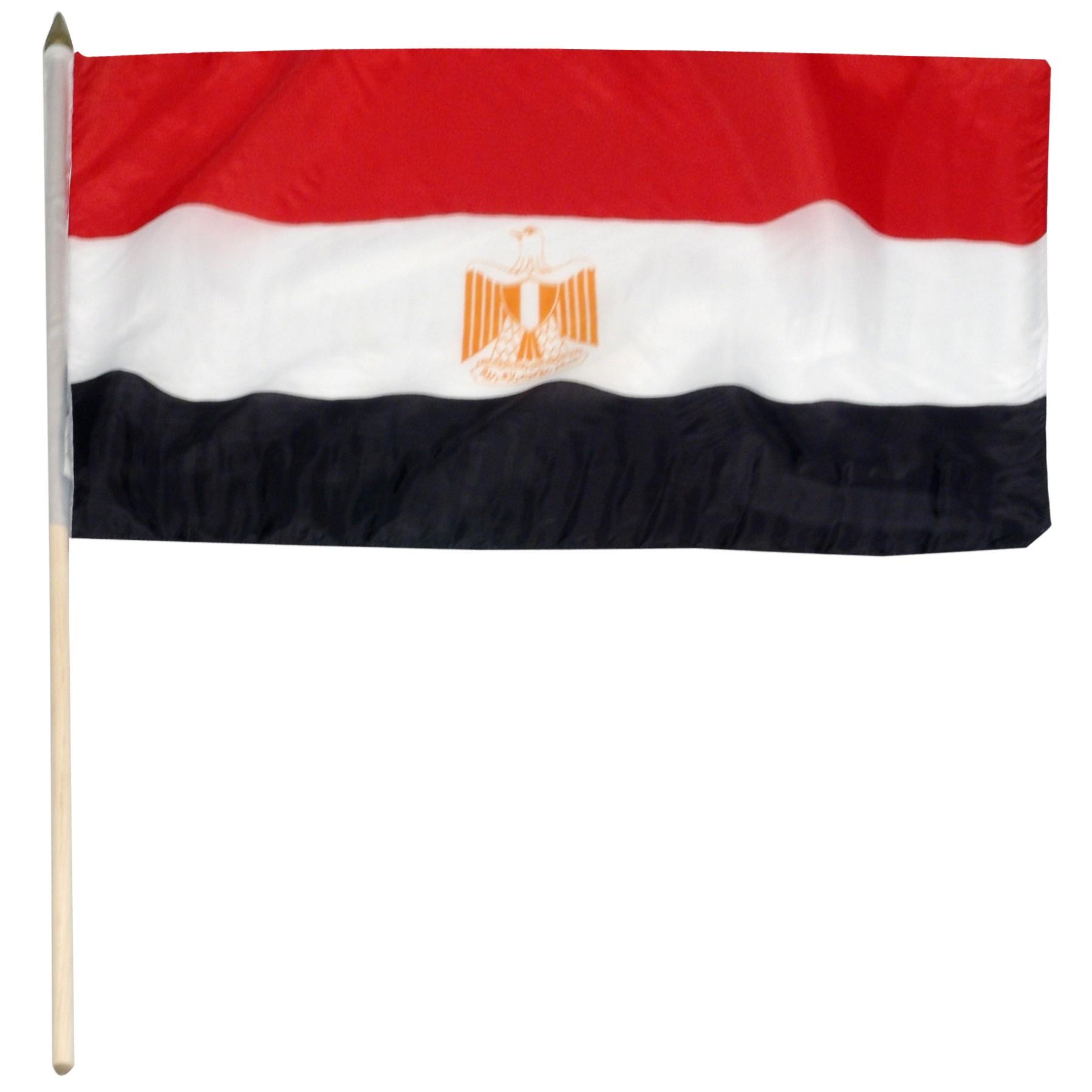 صورة لعلم مصر (1)