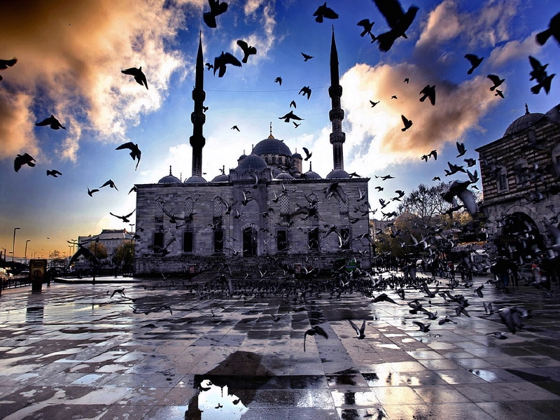 صور اشكال مساجد (1)