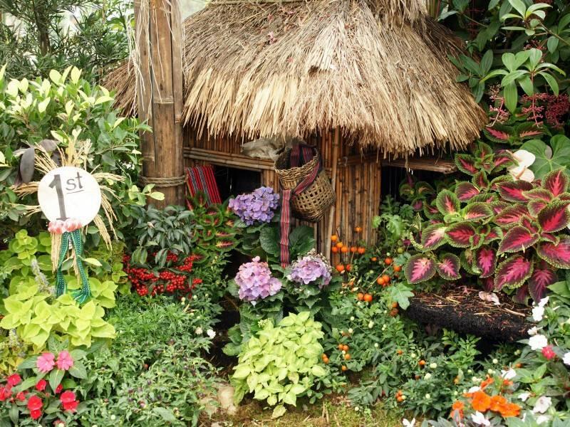 حدائق للبيوت 1