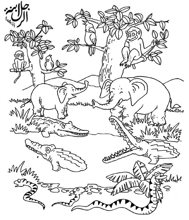 صور رسومات كرتون للتلوين للأطفال لتعليم التلوين (3)