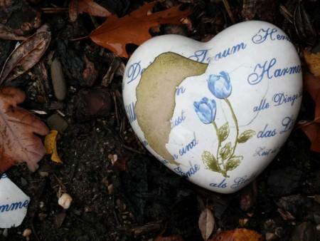 اجمل واحلي صور قلب (3)