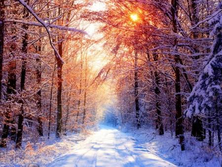 احلي خلفيات عن الشتاء 2016 (3)