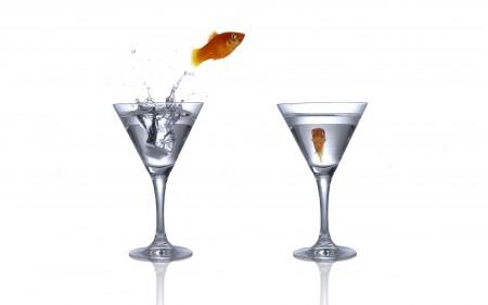 اسماك الزينة (1)