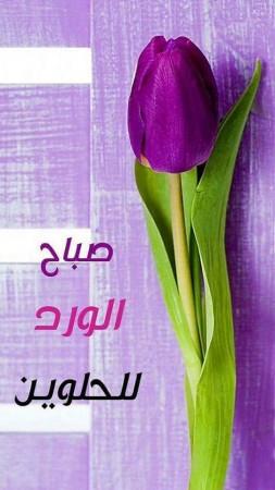 صباح الخير (2)