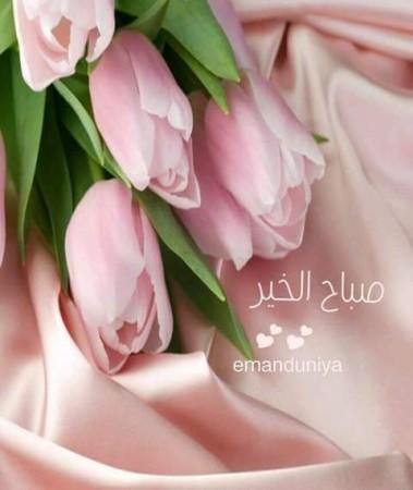صباح الخير (4)