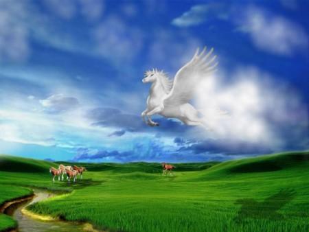 صور احصنة وفرس عربي اصيل بالوان جميلة (1)
