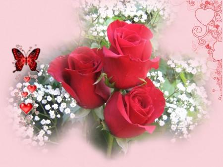 صور قلب احمر احلي قلوب حب ورومانسية حمراء (4)