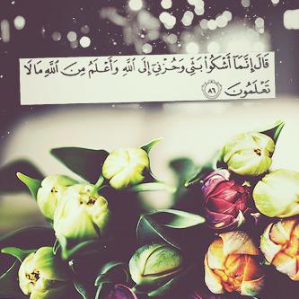 تحميل صور اسلامية ودينية لبرنامج الواتس اب (2)