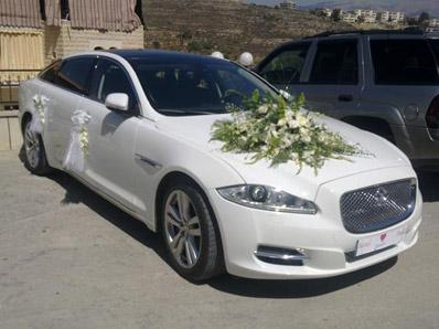 تزويق سيارات اعراس (3)