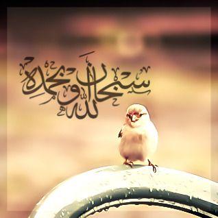 صور رمزيات اسلامية ادعية واذكار اسلامية للواتس اب (2)