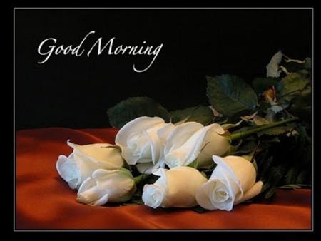 صور صباحية جميلة (1)